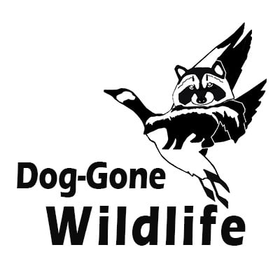 Dog Gone Wildlife